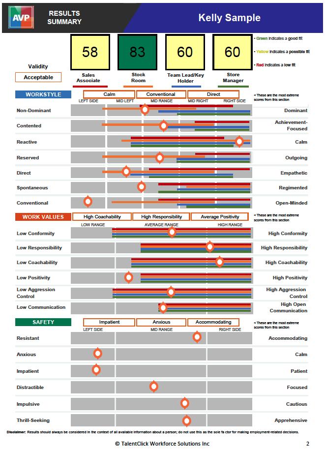 retail industry avp summary report